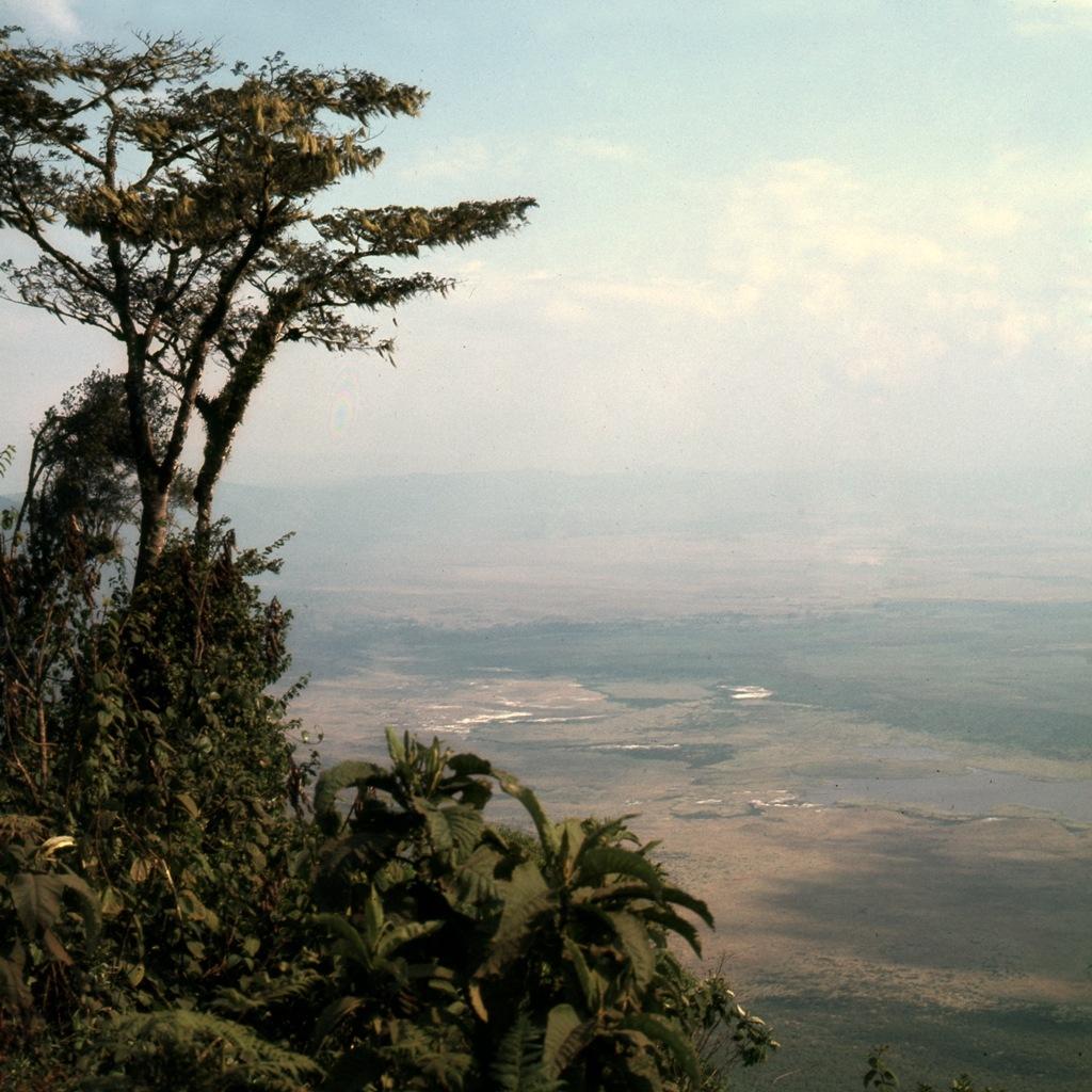 Tanzania 1981