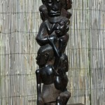 In enkele Afrikaanse mythen wordt de mens uit een boom geboren.