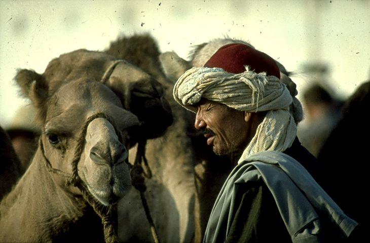 Tunesië, een portret