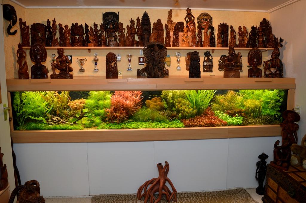 Bart Laurens   Een website met vooral heel veel terrarium , aquarium  en vijverinformatie