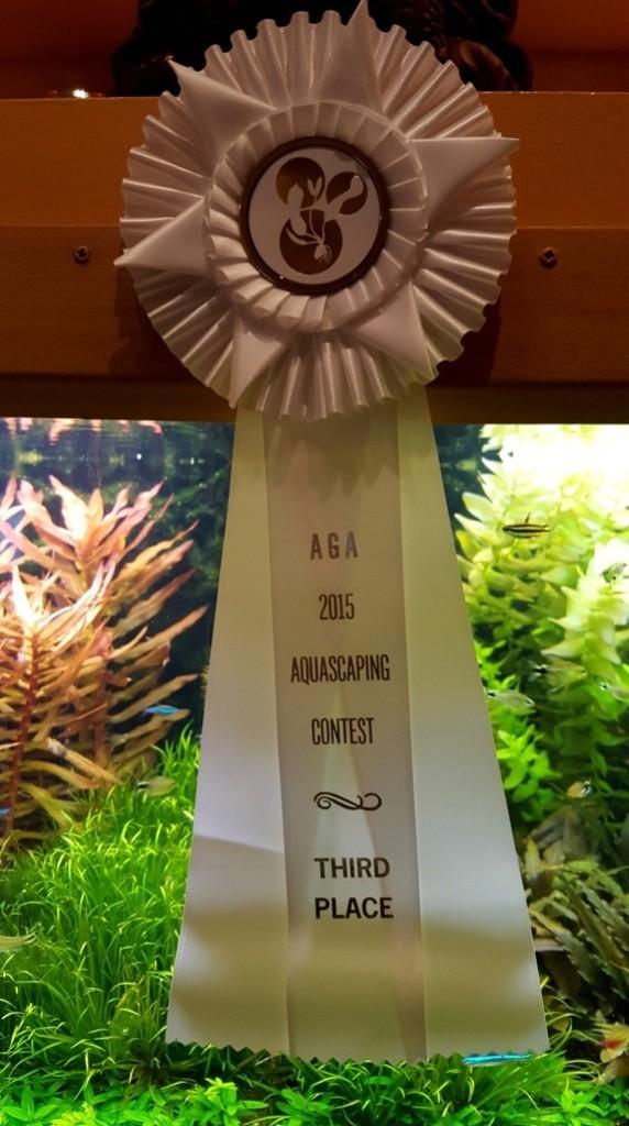 Bij deelname in 2015 aan de internationale scaping contest won ik hiermee de derde prijs in de categorie Dutch Style. Leuk resultaat op internationaal niveau.