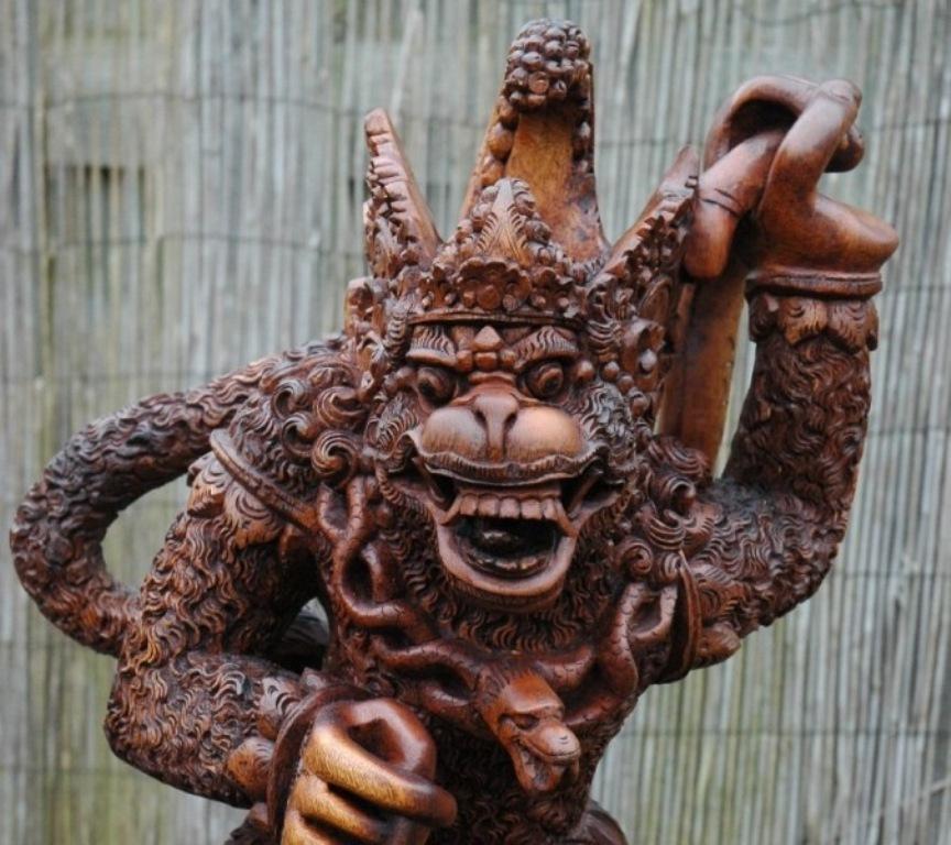 Hanuman kijkt je aan.