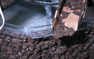 Paludarium de glazen hoekprofielen