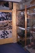 Een hoekje met terraria in deReptilion expositie aan de Dorpsstraat in Zoetermeer.