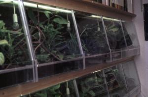 Technische tips voor het terrarium 004