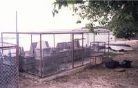 Opkweek kooien op Curaçao.
