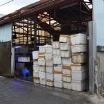 """Groothandel Pt. Dinar, Darum Lestari Export in Kuta Utara, die doet in """"Live Marine tropical fish, coral, invertebrate, other"""" en ook in """"Mariculture Coral en Artificial Rock""""."""