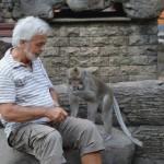 Er zijn verschillende apenbossen op Bali. Ze worden 'monkey forests' genoemd.