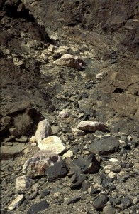 Namibie- Zuid Afrika, 1992 nr 0389
