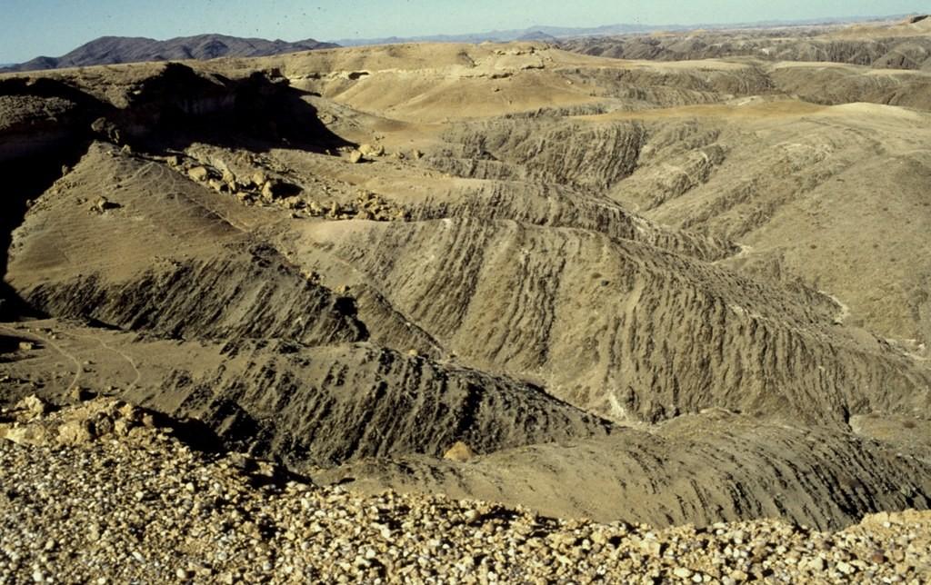 Namibie- Zuid Afrika, 1992 nr 0458