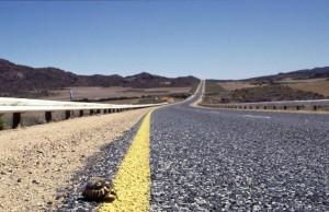Namibie- Zuid Afrika, 1992 nr 0597