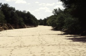 Namibie- Zuid Afrika, 1992 nr 0669