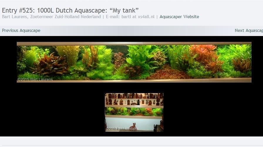 Dutch Style Aquarium Bart Laurens